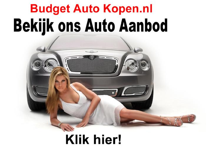 autoaanbod_site_01